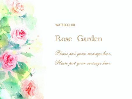 經典玫瑰花園卡