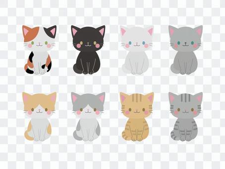 Cat illustration material