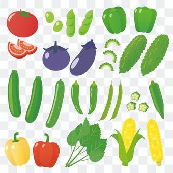 各種夏季蔬菜