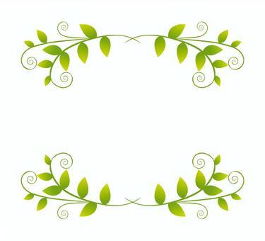 新鲜的绿色框架