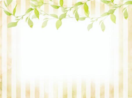 常春藤條紋米色