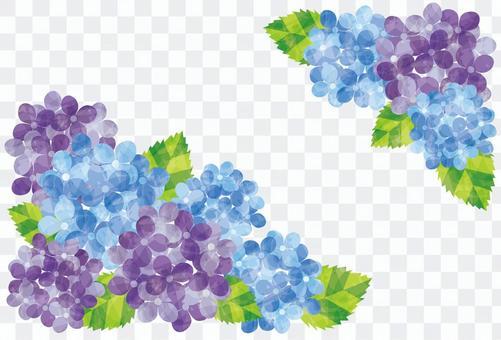 Flower frame / hydrangea