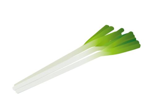 一個很長的洋蔥
