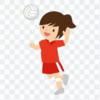 排球(女子)