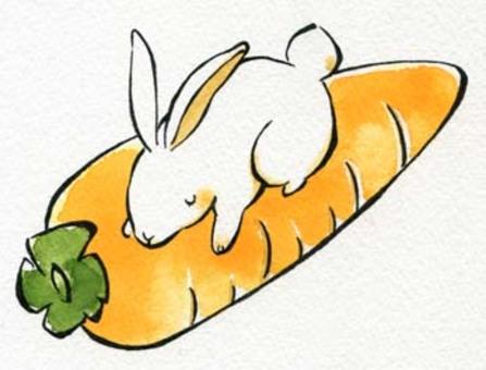 兔子和胡萝卜