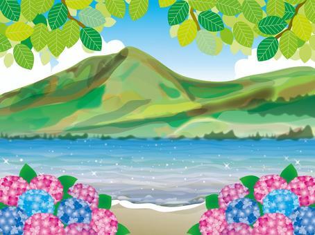 繡球花(40)新鮮的綠色湖的海岸線