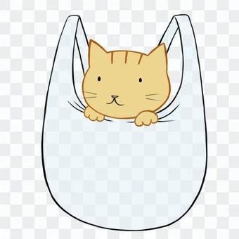 貓在一個塑料購物袋