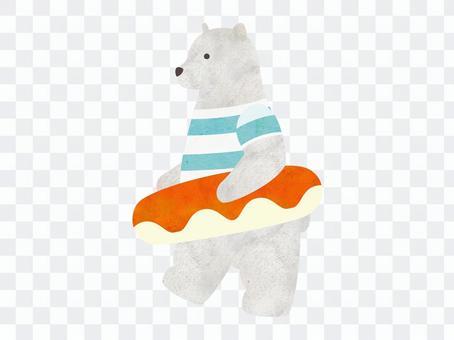 Polar bear with a swim ring