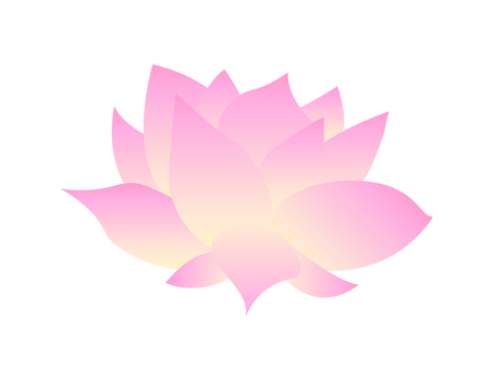 Water lily flower illustration