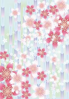 Sakura的花和Yabu 5
