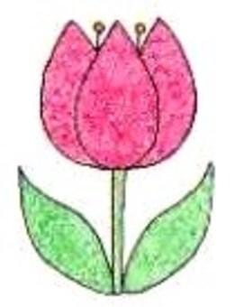 Chulorip (color)