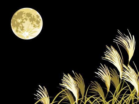 참억새와 보름달