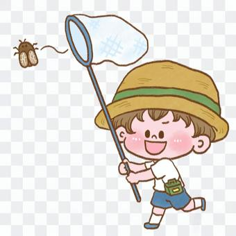 一個男孩捉昆蟲的插圖