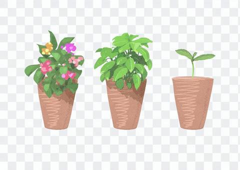 花盆007