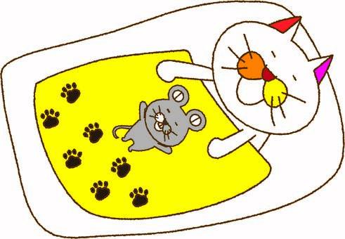 Cat tamako and mouse nap