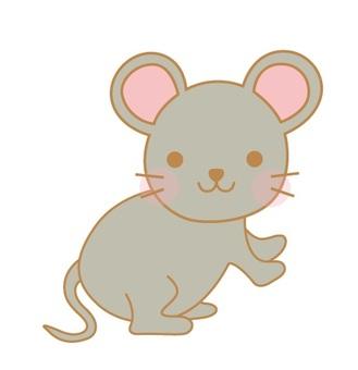動物動物兔棕色