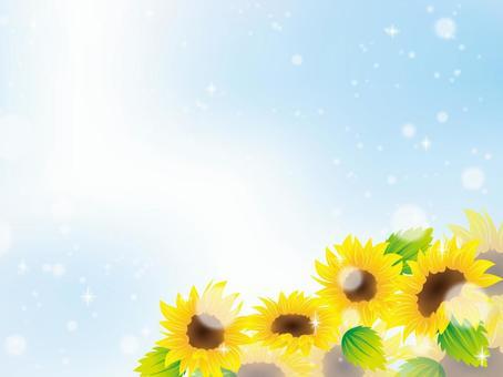 夏天圖像001