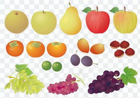 秋天的果實