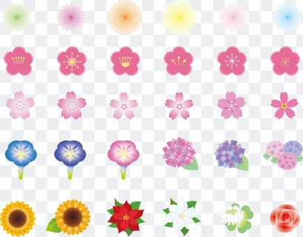 各種花卉1