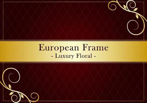 歐洲框架005