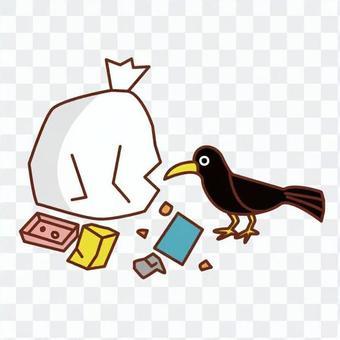 垃圾和烏鴉