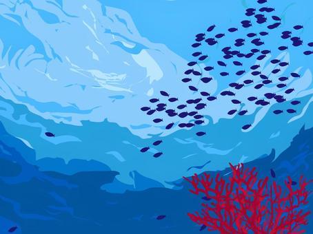切珊瑚和小魚群
