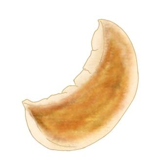 一個烤餃子,數字化繪製
