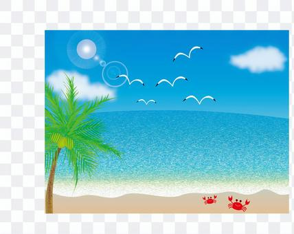 Blue sky, sea, seagulls and palm trees and crabs