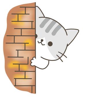 可愛的貓圖調查