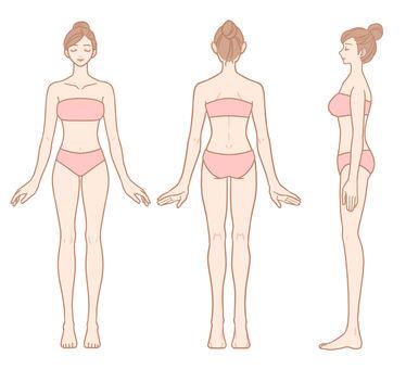 Female whole body (front / back / side set)