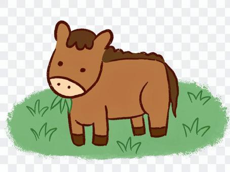 Pasture-eating horse cut