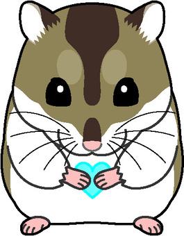 Djangarian倉鼠7