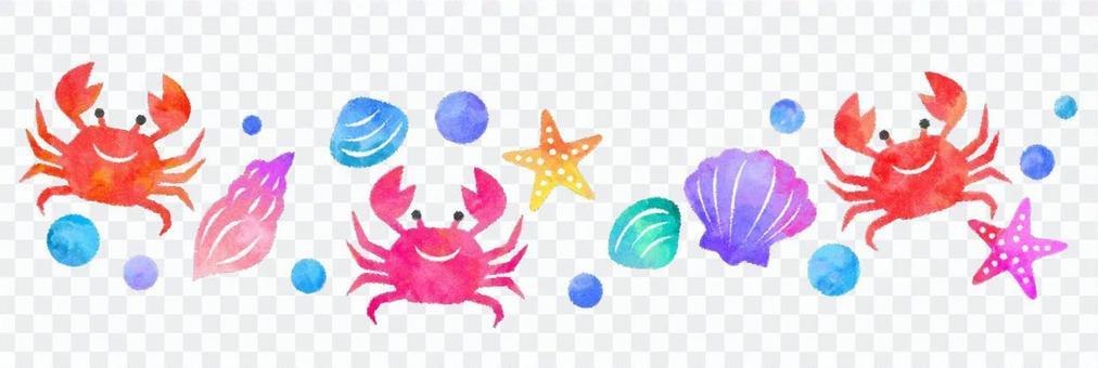 Shellfish and crab