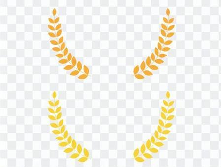 金小麥框架