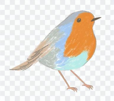 可愛的小鳥