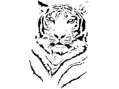 New Year's card material_tiger_1