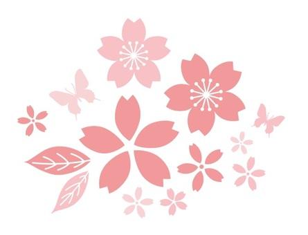 樱花点设计