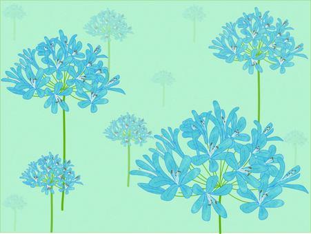 夏天到了百子花紡織藍色
