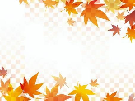 秋葉方格的框架