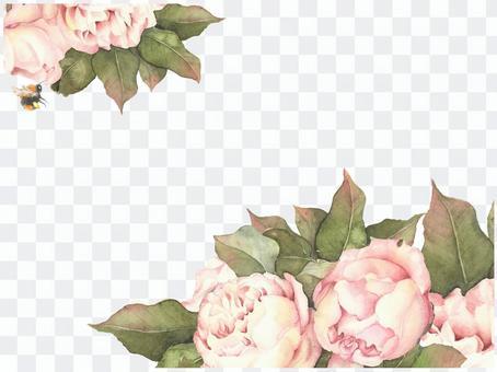 Letter background 10 - English Rose