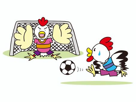Soccer playing football