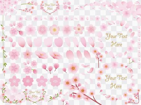 設置櫻花花瓣的材料