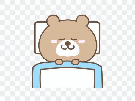 布団で眠るくま
