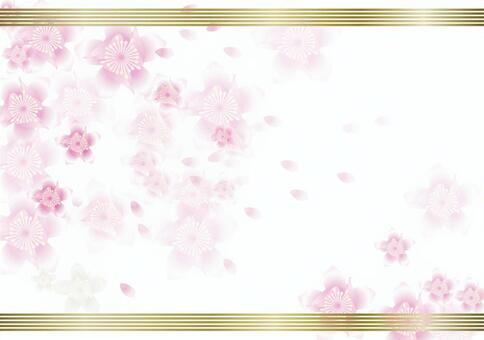 Peach blossoms 44