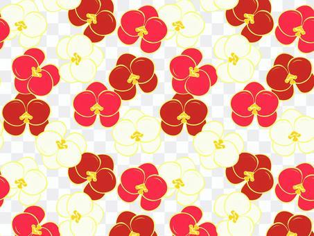 Phalaenopsis pattern