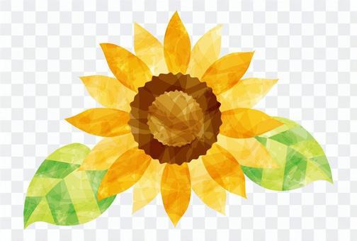 夏天/向日葵