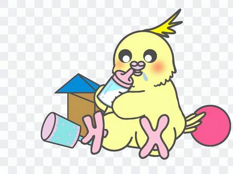 小鸚鵡小雞寶寶