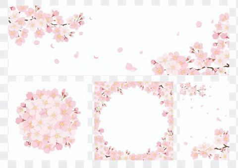 벚꽃 배경 세트