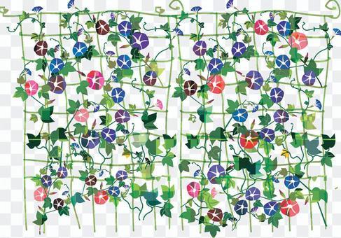Flower series Asagao curtain