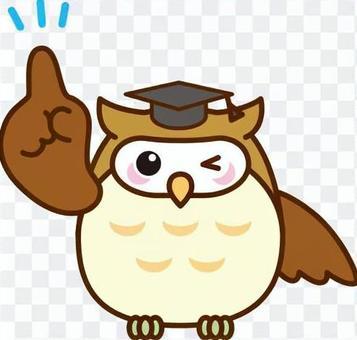 貓頭鷹老師教授貓頭鷹鳥類